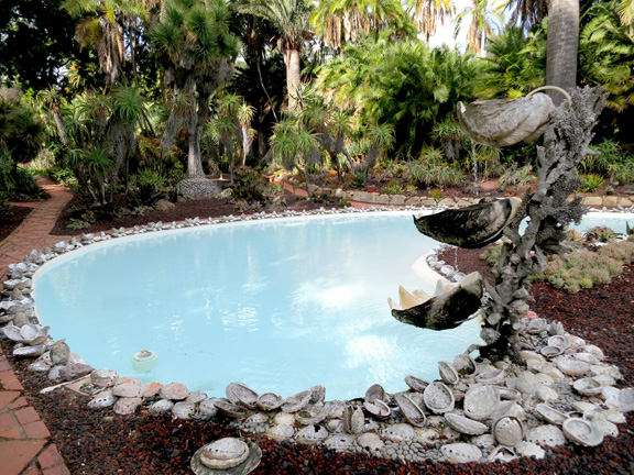 the encrusted abalone shells around the clamshell pool