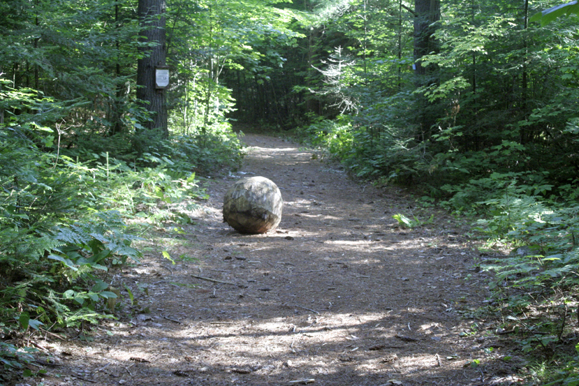 the haliburton forest trail for email