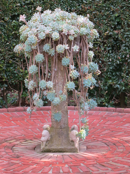 urn and succulents 1