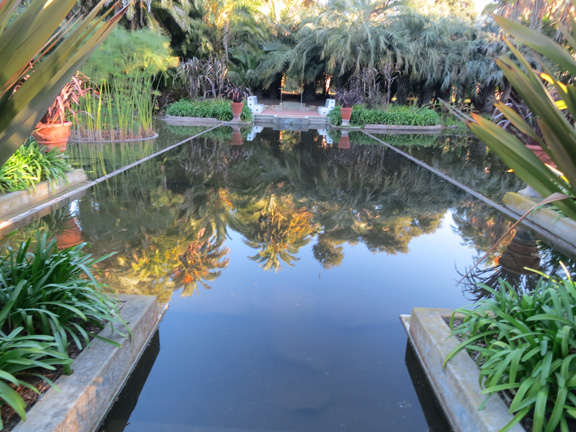 This is the reflecting pool. I am told that this is where the large lotus flowers bloom in July.